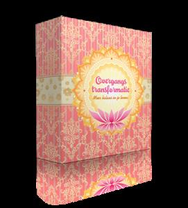 Overganstransformatie-BOX-3D
