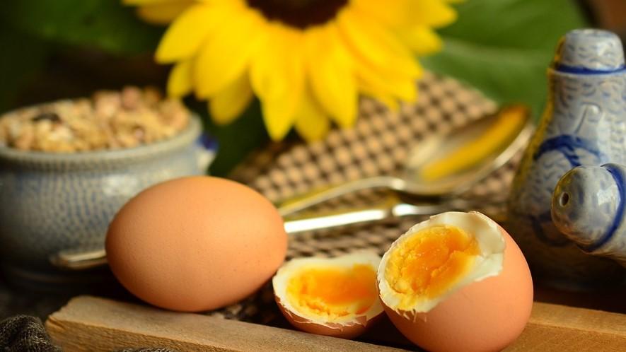 Teveel eiwitten eten beter voor onze gezondheid of toch niet?