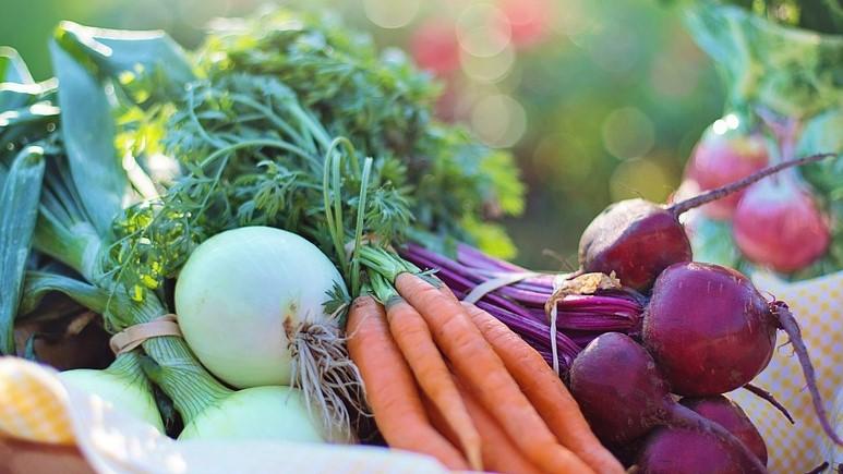 plantaardig dieet gezonder