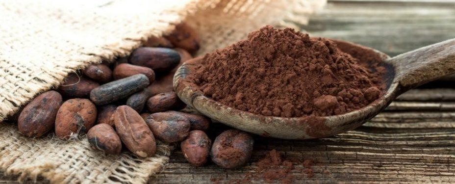 Het beste cacaopoeder